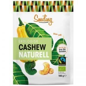 Eko Cashewnötter Naturell 100g - 28% rabatt