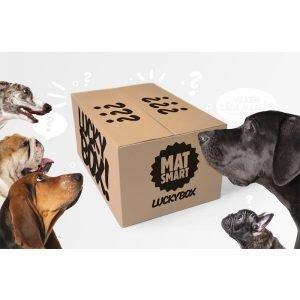 Hund-boxen - 90% rabatt