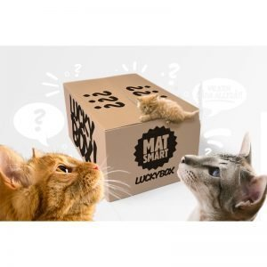 Katt-boxen - 90% rabatt