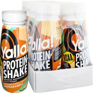 Proteinshake BCAA Mintkaramell 8-pack - 67% rabatt