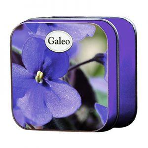 Wild Violet - Tvål i plåtask Fransk naturtvål 100g
