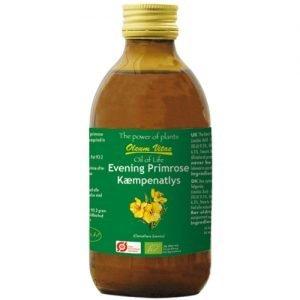 Oil Of Life Jättenattljusolja kallpressad och ekologisk - 250 ml