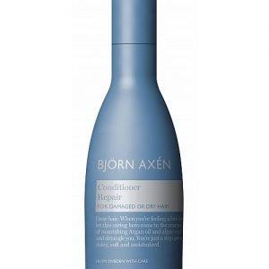Björn Axén Repair Conditioner - 250 ml